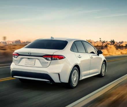 Sedan Driving - Enjoy the Drive in the Toyota Corolla